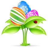 Easter eggs-flowers card with ladybug Royalty Free Stock Image