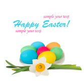 Easter eggs and flowers of daffodils Stock Images