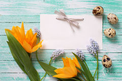 Easter eggs, flowers and empty tag on  turquoise wooden background. Royalty Free Stock Images