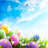 Easter eggs with flowers in grass on blue sky. Colorful Easter eggs decorated with flowers in the grass on blue sky background Stock Photos