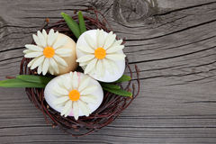 Easter eggs and flowers in a nest Royalty Free Stock Photo