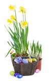 Easter eggs with flowers in  pot Royalty Free Stock Photography