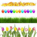 Easter eggs and flowers in a row Royalty Free Stock Photos