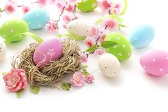 Easter eggs and flowers on white Royalty Free Stock Image