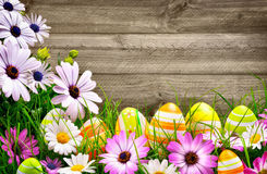 Easter eggs, flowers and wooden background Stock Photos