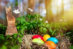 Easter eggs in a forest royalty free stock photography