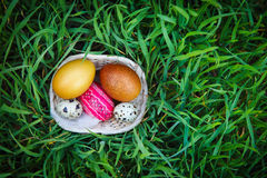 Easter eggs on fresh grass. Happy easter with colorful eggs on fresh grass Royalty Free Stock Image