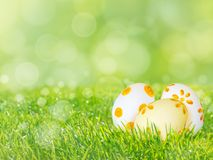 Easter eggs on the green grass lawn spring background. Easter eggs on the fresh green grass lawn spring blurred background Stock Images