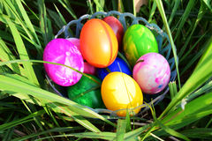 Easter Eggs with Fresh Green Grass over white background Royalty Free Stock Photos
