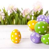Easter eggs and Fresh Green Grass Royalty Free Stock Image