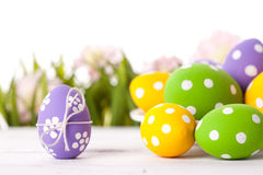 Easter eggs and Fresh Green Grass Royalty Free Stock Photo