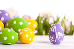 Easter eggs and Fresh Green Grass Stock Photography