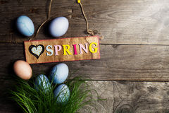Easter Eggs on Fresh Green Grass on Wooden Background with Sunny Royalty Free Stock Photos