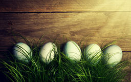 Easter Eggs on Fresh Green Grass on Wooden Background with Sunny Stock Photography