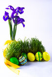 Easter eggs in fresh green grass Royalty Free Stock Images