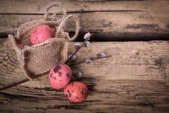 Easter eggs with gerbera daisy flowers Stock Photos