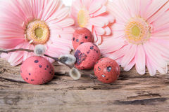 Easter eggs with gerbera daisy flowers Royalty Free Stock Photography