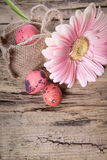 Easter eggs with gerbera daisy flowers Royalty Free Stock Images