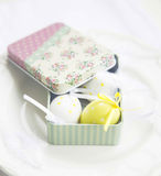 Easter Eggs in a Gift Box Royalty Free Stock Photo