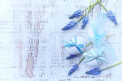 Easter Eggs and Grape Hyacinths Stock Image