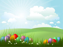 Easter eggs in grass. On a sunny day Royalty Free Stock Images
