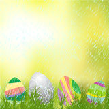Easter eggs on the grass Stock Photos