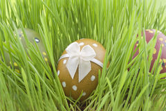 Easter eggs on the grass Royalty Free Stock Photos