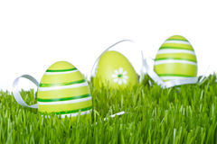 Easter eggs in grass Stock Image