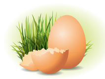 Easter Eggs and grass Stock Image