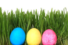 Easter eggs in grass Royalty Free Stock Photos