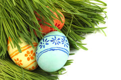 Easter eggs in grass Royalty Free Stock Image