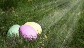 Easter Eggs in Grass. Three Easter eggs, pink, green and yellow laying in grass with sunbeams shining from above Royalty Free Stock Photo