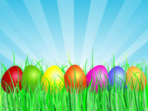 Easter eggs in grass Stock Photos
