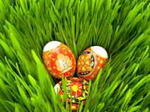 Easter eggs in the grass. Easter eggs decorated Ukrainian folk figure in the grass Stock Photo