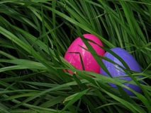 Easter Eggs in Grass. Two Fake Eggs in Real Grass Royalty Free Stock Images