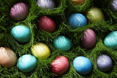 Easter Eggs in the grass. Easter egg hunt with grass Stock Image