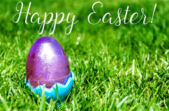 Easter eggs on the grass background Stock Image