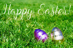 Easter eggs on the grass background Stock Photography