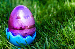 Easter eggs on the grass background Stock Photos