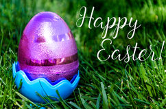Easter eggs on the grass background Stock Images