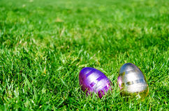 Easter eggs on the grass background Royalty Free Stock Image