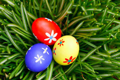 Easter eggs in grass birds eye view Royalty Free Stock Photography