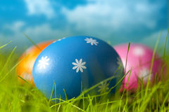 Easter eggs on the grass and blue sky background Royalty Free Stock Photo