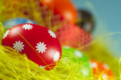 Easter eggs on the grass and blue sky background Stock Photos