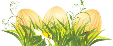 Easter eggs in the grass with chamomile Stock Photo