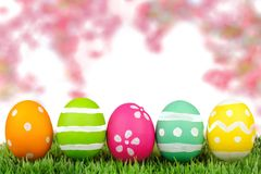 Easter eggs on grass with cherry blossoms Stock Image