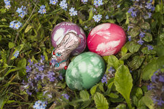 Easter eggs in the grass 6 stock photo