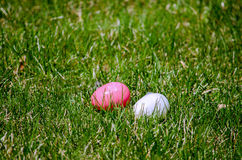 Easter eggs in the grass Stock Photos