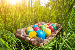 Easter eggs on the grass stock image
