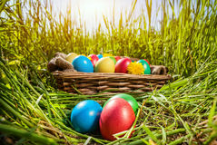 Easter eggs on the grass. Easter colorful eggs in the basket on the green grass at sunset Royalty Free Stock Photo